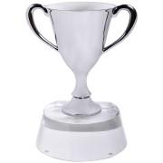Стела 'Кубок победителя' в подарочной упаковке; 13х10х17 см; стекло, металл